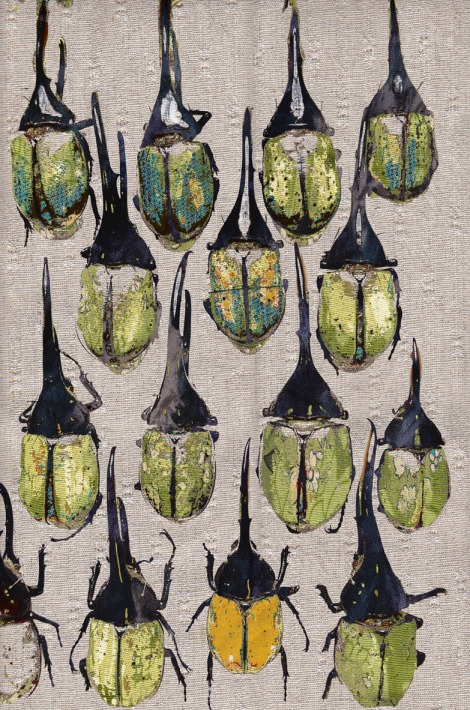 Tabitha Stewart for Indiabilly elephant beetles we are textiles