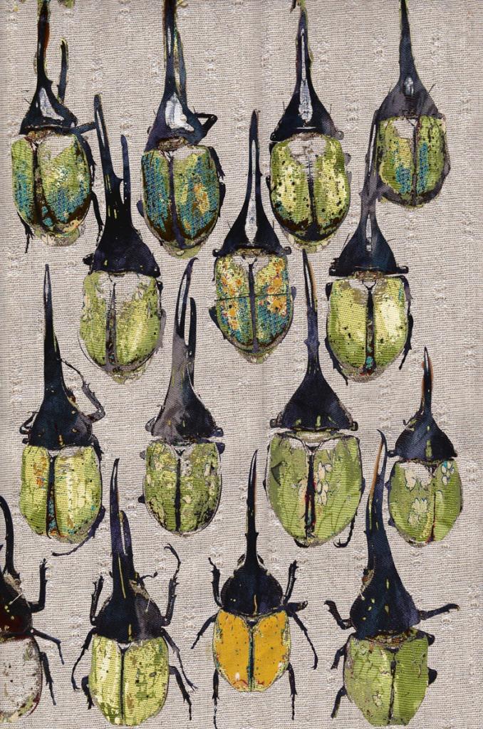 Tabitha Stewart 'Elephant Beetles'
