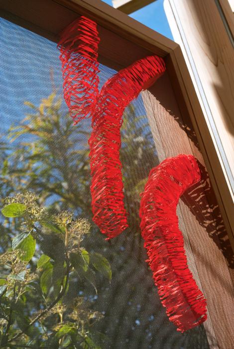 Anna Glasbrook 'Chelsea Flower Show Homebase Garden' detail