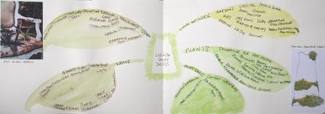 Mindmap for living dress