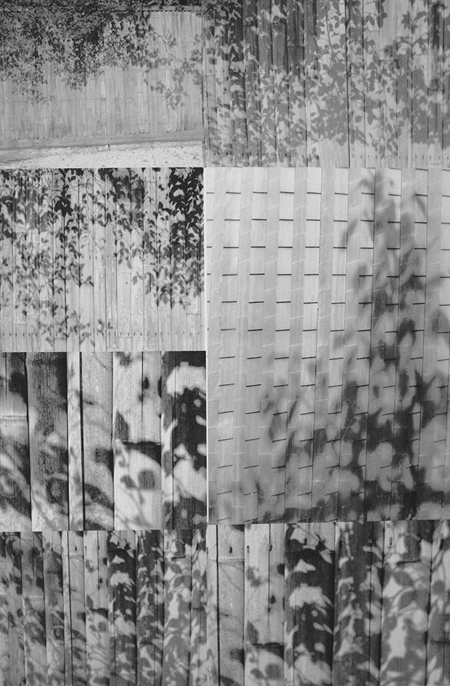 Collage of photographs from sketchbook, including leaf shadows on bamboo fence surrounding the Katsura Palace in Kyoto. Photographs by Gill Hewitt