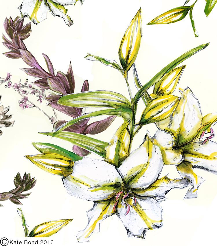 Cressida lily katebond