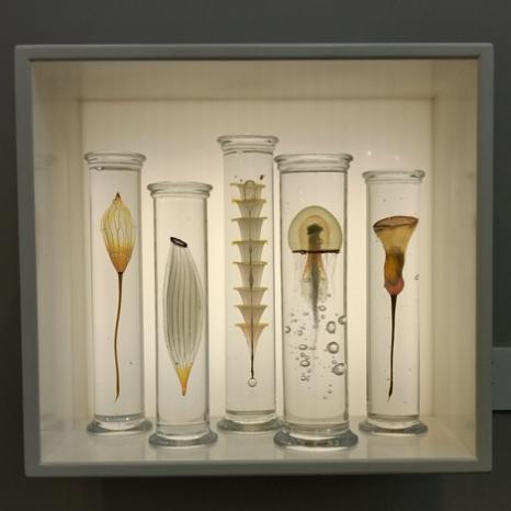 10. 'Jar collection', Steffan Dam, blown and cast glass